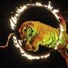 Цирки в Павлово